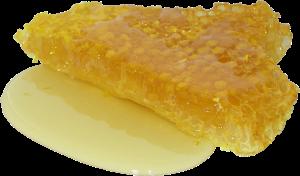 honey-2201210_1920
